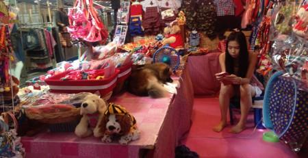 Pink Hell mit Hund