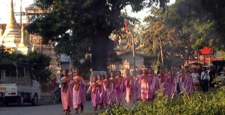 Die Roben der Nonnen haben eine etwas... besondere Farbe. Auch im Punkt sozialer Status sind sie den Mönchen unterlegen.